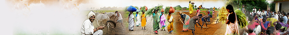 Development & Panchayats Department, Haryana